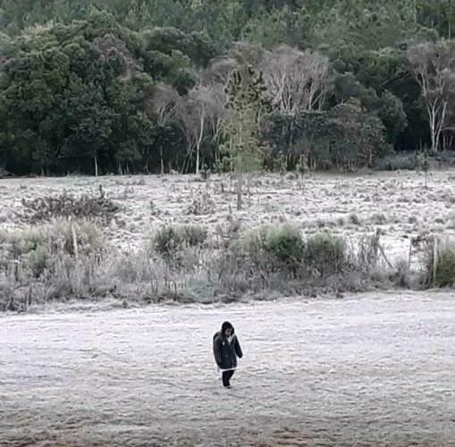 """""""La historia de Axel es la de muchísimos niños del interior de Misiones"""" dijo Sartori sobre el nene que camina 3 kilómetros para llegar a la escuela"""