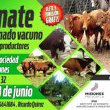 El 4 de Julio se viene una nueva edición del Remate Pro a Pro en Virasoro: 230 toros y 400 vaquillas de la mejor calidad