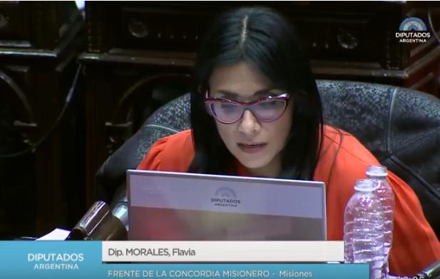 Aborto: La posición en el recinto de la diputada misionera Flavia Morales