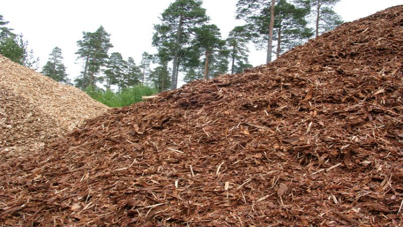 Desde la Mesa Forestal Provincial estudiarán oportunidades de proyectos de bioenergía asociativos y de pequeña escala
