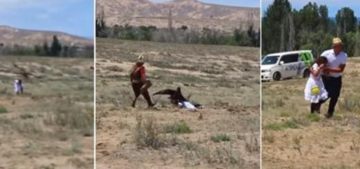 Video: así fue el escalofriante momento en que un águila real caza a una nena de 8 años