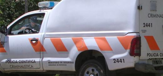 Conmoción por triple crimen en Mendoza: asesinaron a puñaladas a una mujer, su hija y un nene de 4 años