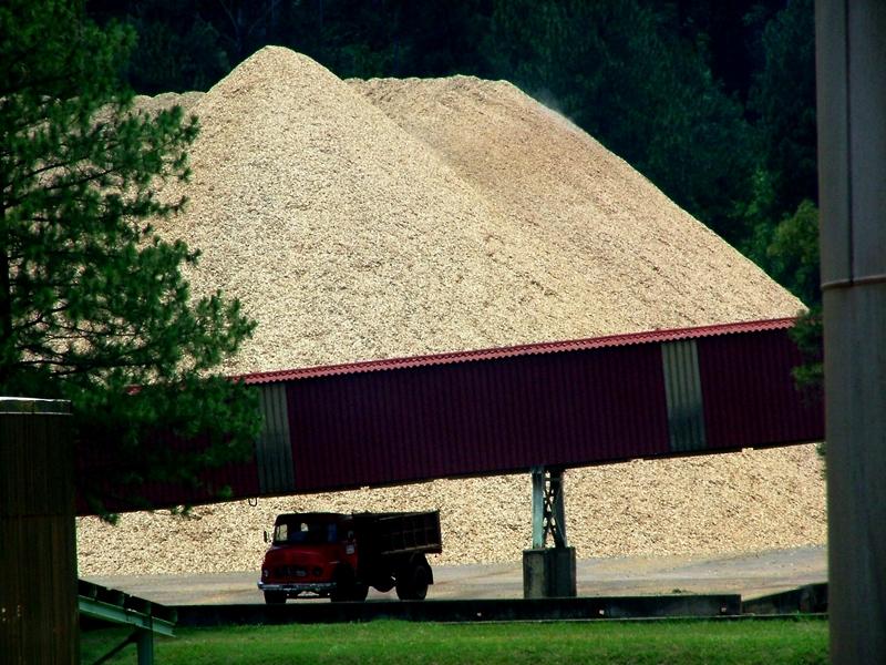 """Sobreoferta de madera: """"La solución para salir de este escenario es compleja, se necesitan inversiones de nuevas industrias en el mercado forestal de la región"""""""