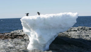 Cambio climático: alertan sobre una inédita aceleración del ritmo de deshielo de la Antártida