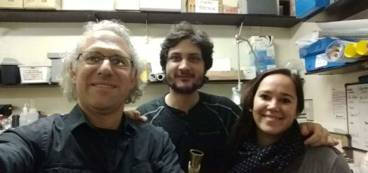 Una nueva investigación del INYMconsolida la yerba mate como preventiva de Parkinson