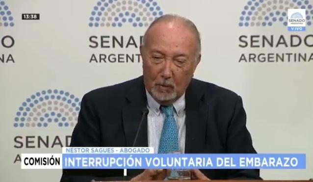 VIVO: segunda jornada de debate en el Senado por el proyecto para legalizar el aborto en la Argentina