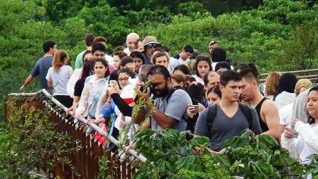 Esta semana más de 10 mil personas por día visitan las Cataratas del Iguazú