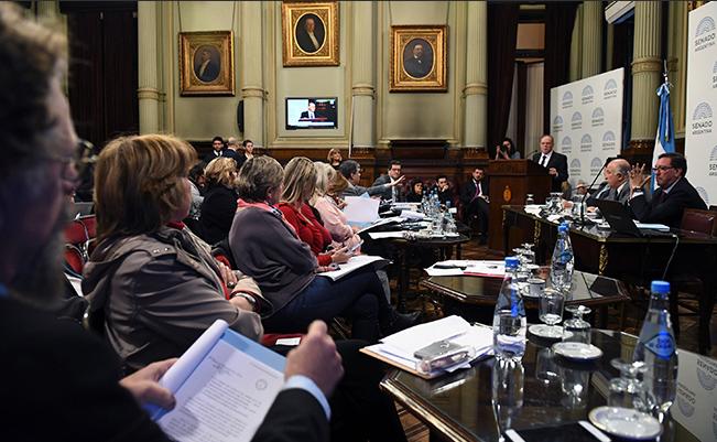 VIVO, Senado: se realiza la cuarta audiencia pública sobre despenalización y legalización del aborto