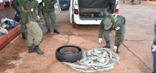 Corrientes: llevaban marihuana en la rueda de auxilio y los descubrieron