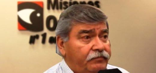 """Madereros consideran """"clave"""" al puerto de Posadas para fortalecer las exportaciones"""