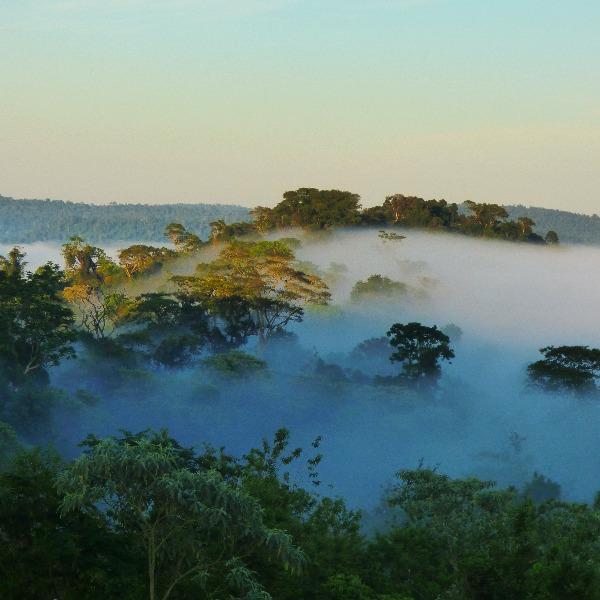 Conocé las 25 bellezas misioneras que concursan por las 7 Maravillas Naturales Argentinas