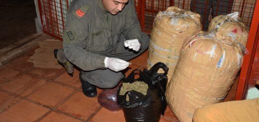 Gendarmería allanó una casa y secuestro 38 kilos de marihuana en Posadas