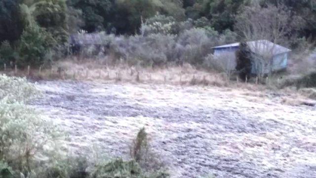 Por las bajas temperaturas varias zonas de Misiones amanecieron blancas por las heladas