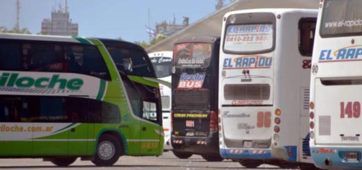 El Gobierno oficializó el inicio de los micros low cost: podrán ofrecer pasajes con un descuento de hasta 95%