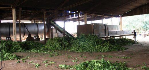 Con ayuda del Estado volvió a funcionar la Cooperativa de Concepción de la Sierra