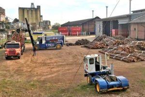 Desde Entre Ríos saldrían las primeras exportaciones de rollos de madera de pino con destino a China