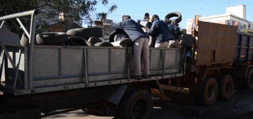 Dengue: la Municipalidad recolectó más de 8 mil neumáticos en desuso en gomerías dePosadas