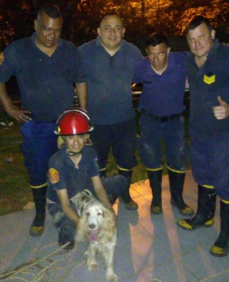Bomberos rescataron en Posadas a un perro que cayó a un pozo de 10 metros