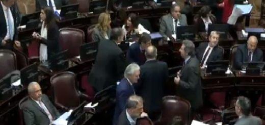 VIVO: el Senado debate sobre los allanamientos a Cristina Fernández de Kirchner