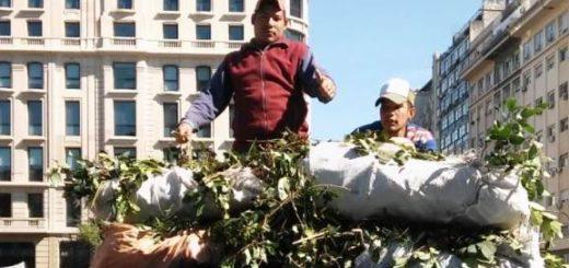 """Tareferos realizan un """"yerbatazo"""" en Capital Federal en reclamo de mejores condiciones laborales y un subsidio interzafra"""