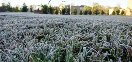 Alerta por heladas para el sur y centro de Misiones con temperaturas mínimas de 3 grados