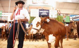 La Fiesta Provincial del Ganadero convocó a numerosos productores en Montecarlo