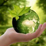 ¿Tenés problemas de nutrición?, el culpable podría ser el CO2