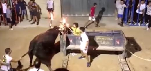 España: una mujer fue embestida por un toro que tenía los cuernos en llamas