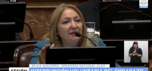 VIVO: el Senado debate el proyecto para legalizar el aborto y aseguran que ya son 38 los votos negativos