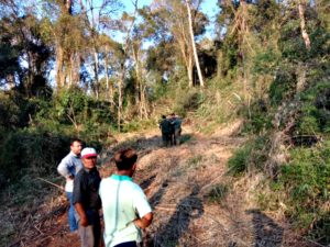 Desmonte en la Comunidad Mbya Guaraní Arroyo 9: Ecología constató violación a la legislación ambiental e inició sumario a la firma Tschirsch