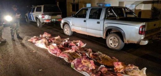 PNA decomisó casi 400 kilos de carne vacuna ingresados ilegalmente desde el Brasil