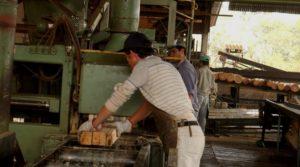 Zona Norte: más de dos mil trabajadores de la industria de la madera se sumarán al paro de mañana