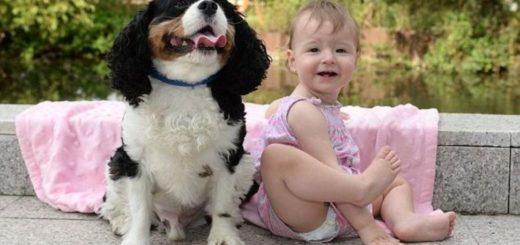 Bebé estuvo a punto de morir por asfixia y su perro le salvó la vida