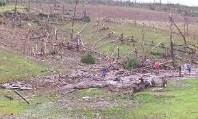 Hoy se cumplen 9 años del tornado de San Pedro: el peor desastre natural en la historia de Misiones
