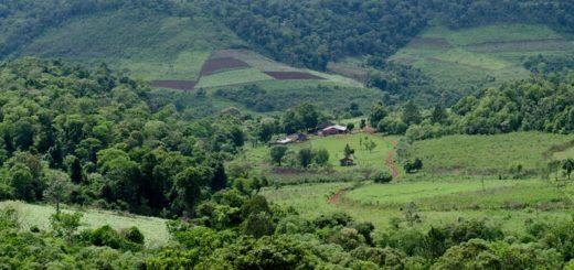El Soberbio: La justicia rechazó demanda por desalojo de la empresa Moconá SA sobre familias colonizadoras del Lote 9 en Puerto Paraíso