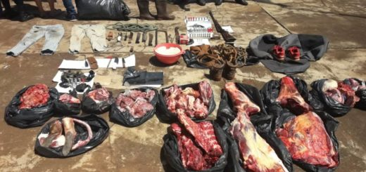 Golpe a una banda de cuatreros que operaba en San Vicente y alrededores: dos detenidos y más de 100 kilos de carne incautados