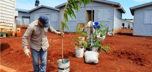 La Provincia dio solución habitacional a 10 familias asentadas en la vía pública en la Chacra 158 de Posadas