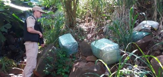 Puerto Iguazú: incautaron 75 kilos de droga que habían traído en bote desde el Paraguay