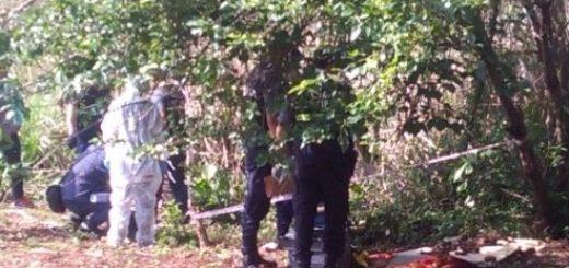 Posadas: los restos óseos hallados en el barrio San Jorge podrían ser de un animal