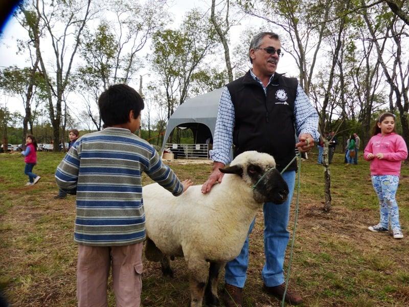 El Fondo de Crédito de Misiones ofrece préstamos para pequeños productores ganaderos