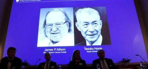 La Fundación Sales financia desde hace 30 años investigaciones en inmunología, en línea con las premiadas con el Nobel de Medicina 2018