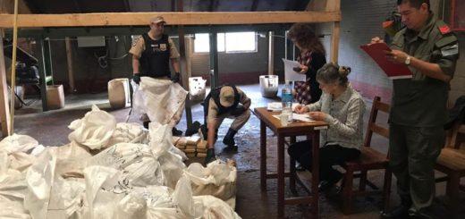 Incineraron tres toneladas y media de marihuana decomisadas por la Prefectura