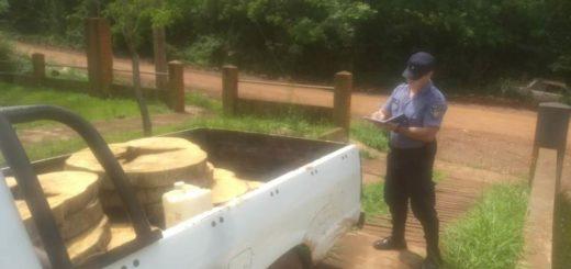 Dos detenidos por apeo ilegal en la aldea Fortín Mbororé de Puerto Iguazú