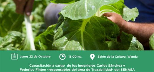 """Capacitarán sobre """"Buenas prácticas de aplicación de productos fitosanitarios para el sector hortícola"""", en Eldorado y Wanda"""