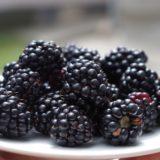 Nutrición: ¿Cómo bajar de peso para el verano sin caer en dietas y productos milagro?