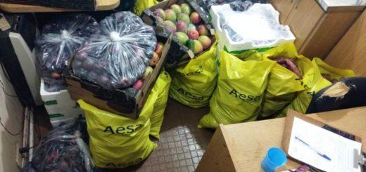 El Senasa impidió que llegaran a consumidores misioneros frutas y verduras de origen y sanidad desconocidos