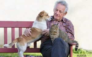 La compañía de una mascota mejora el bienestar físico y psíquico de las personas adultas mayores