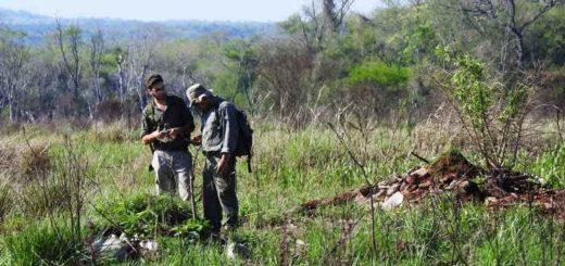 La EBY retiró toneladas de basura de la reserva Urutaú
