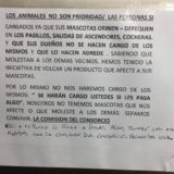 Tristeza: Murió Comando, el perro que despidió al submarino ARA San Juan y aguardaba su regreso