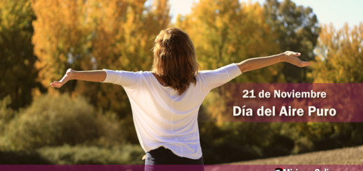 ¿Sabías que hoy celebramos el Día mundial del Aire Puro?